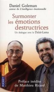 le-livre-surmonter-les-emotions-destructrices-de-Daniel-Goleman