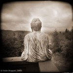 buddha_with_view